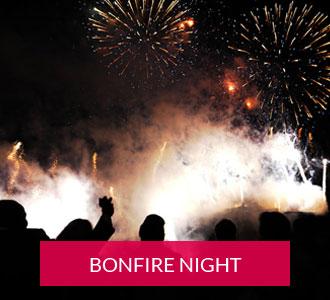 Bonfire night displays button
