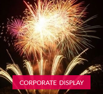 Corporate displays button